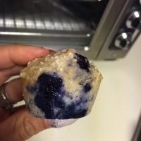 Blueberry Yogurt Mini Muffins