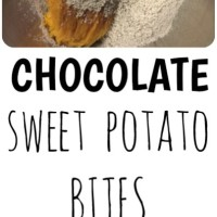 ONLY 2 Ingredient Sweet Potato Fudge Bites!