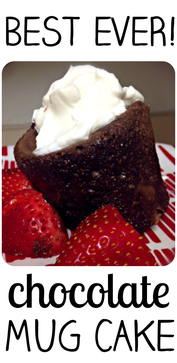 Best Ever Chocolate Mug Cake In The Microwave!