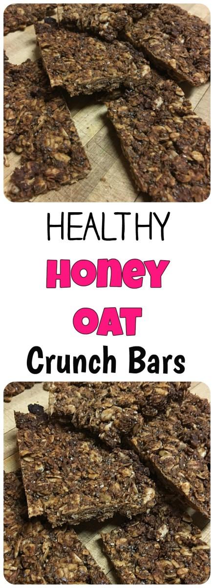 Nature Valley Copy Cat Honey Oat Crunch Bars Skinny Fat Girl